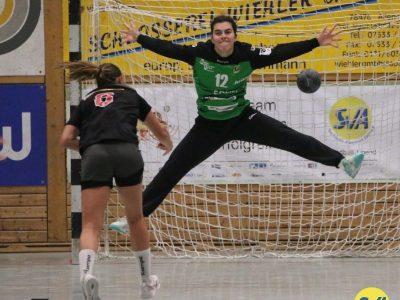Arno SV Allensbach gegen HC Erlangen