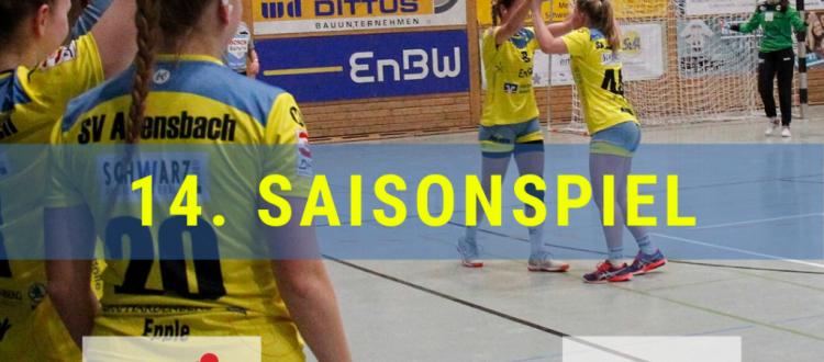 14. Saisonspiel: SG Schozach-Bottwartal vs. SV Allensbach